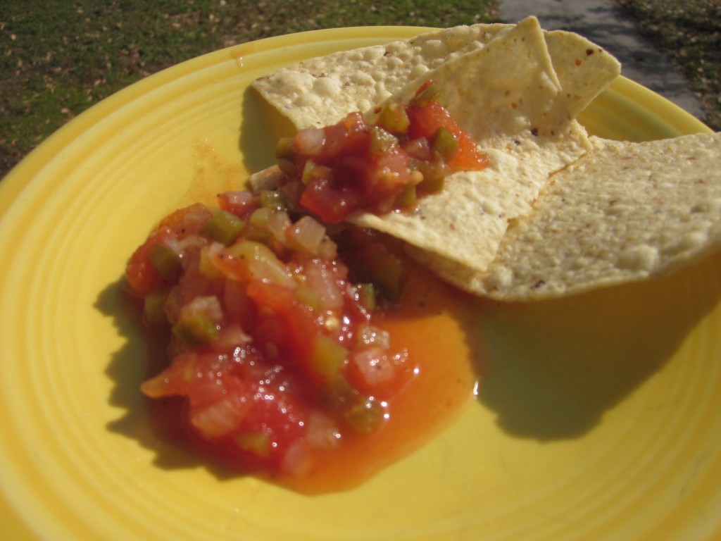 chipsandsalsa